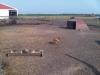 Hen house site